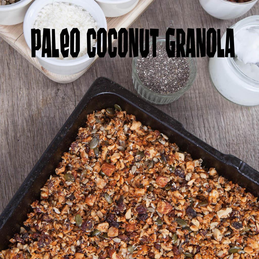Paleo_granola_recipe_easy___74547.1510780257