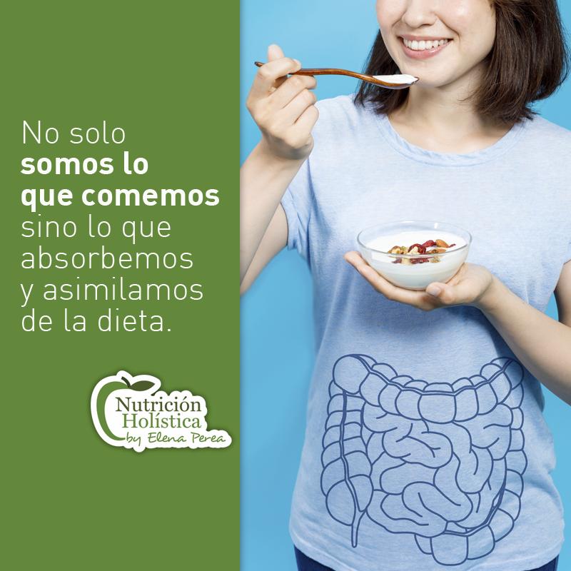Salud-intestinal--nutrición-terapéutica